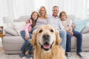 family sitting on couch with golden retriever front and center